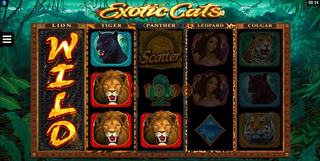 Casino avancerade tips chance