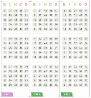 Spelguide för bingo play
