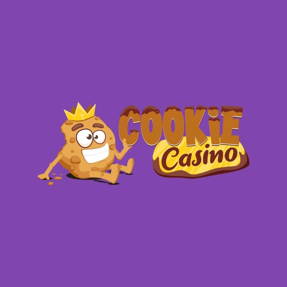 Erfarenhet för spelare Swish casino säker