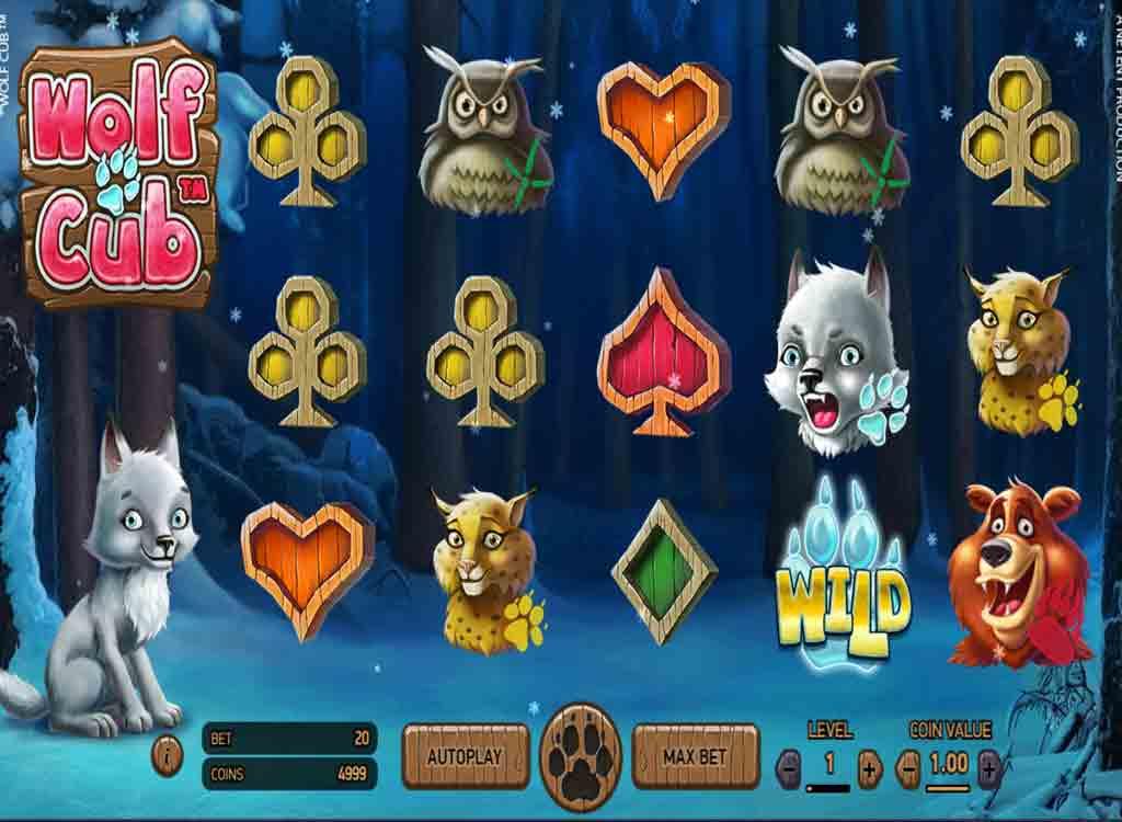 Roulette Tävling Wolf Cub casino nybörjare