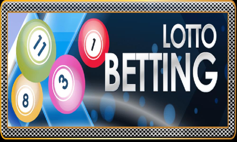 Multi lotto casino cows